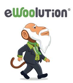 Logo der Marke ewoolution
